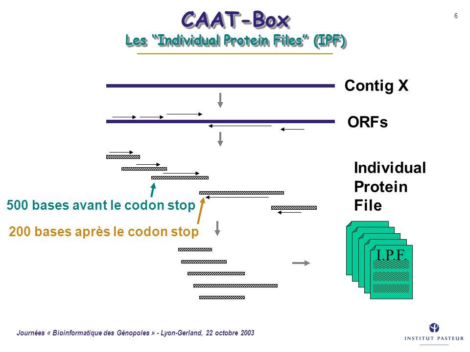 Journées « Bioinformatique des Génopoles » - Lyon-Gerland, 22 octobre 2003 6 CAAT-Box Les Individual Protein Files (IPF) Contig X ORFs 500 bases avant