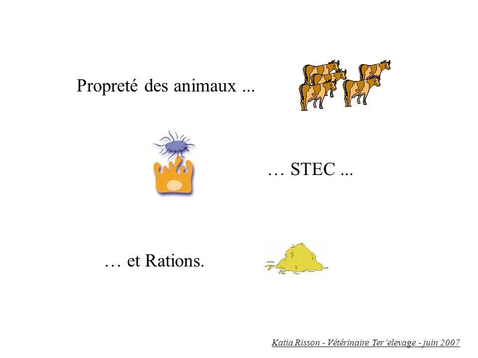 Propreté des animaux... … STEC... … et Rations. Katia Risson - Vétérinaire Terelevage - juin 2007
