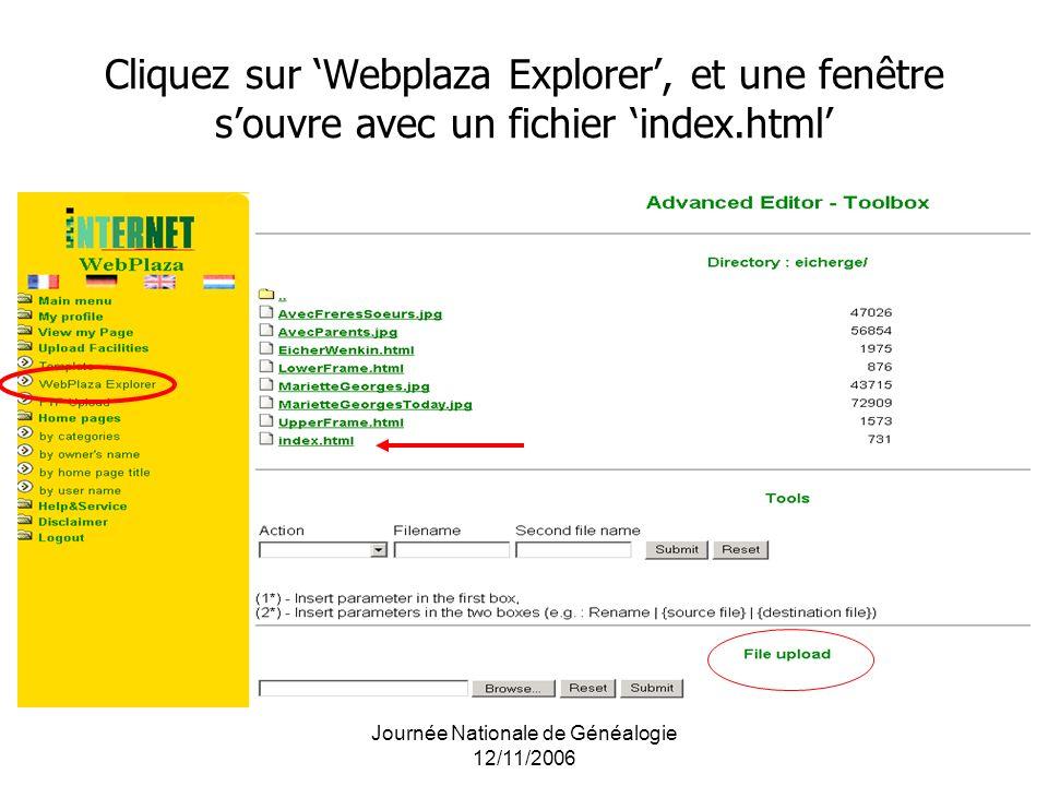 Cliquez sur Webplaza Explorer, et une fenêtre souvre avec un fichier index.html