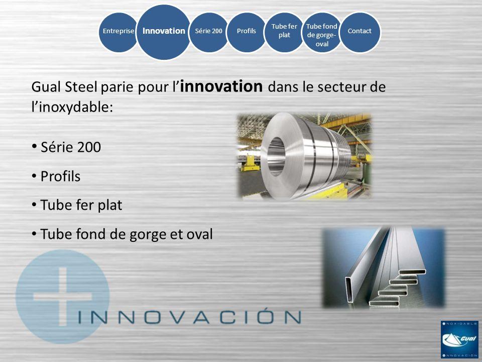 EntrepriseSérie 200Profils Tube fer plat Tube fond de gorge- oval Contact Innovation Gual Steel parie pour l innovation dans le secteur de linoxydable