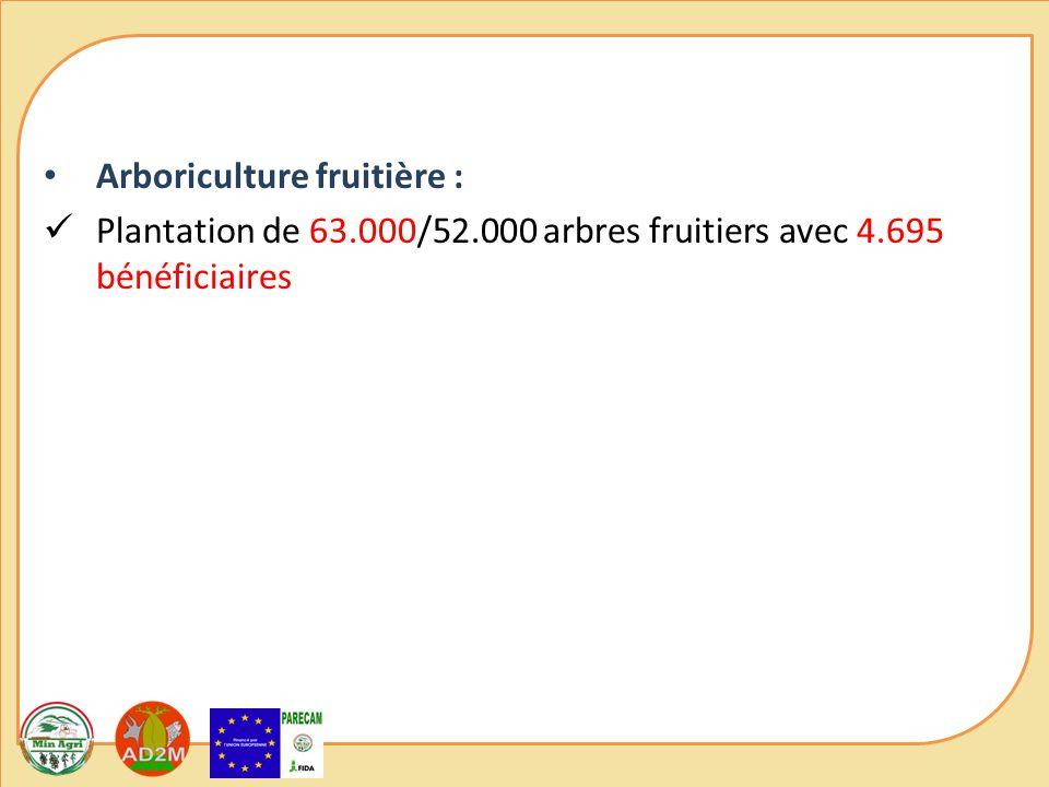 Arboriculture fruitière : Plantation de 63.000/52.000 arbres fruitiers avec 4.695 bénéficiaires