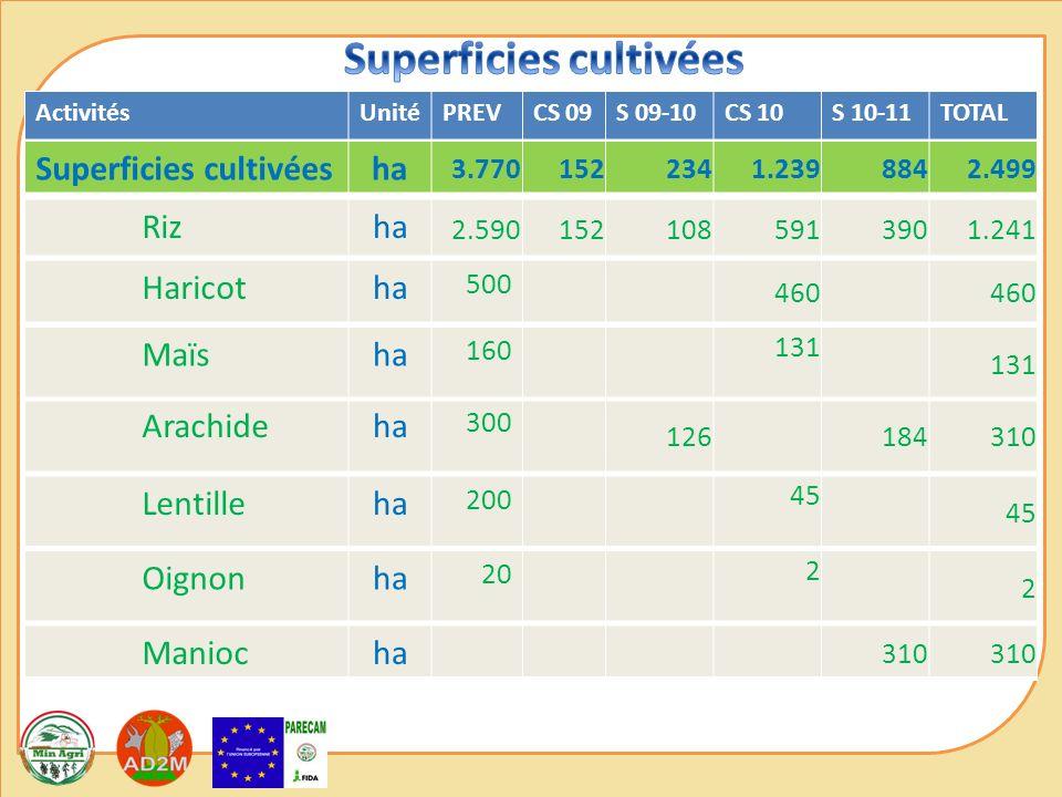ActivitésUnitéPREVCS 09S 09-10CS 10S 10-11TOTAL Superficies cultivéesha 3.7701522341.2398842.499 Rizha 2.5901521085913901.241 Haricotha 500 460 Arachi