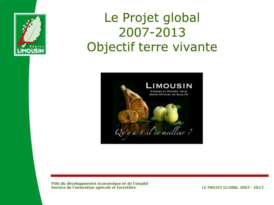 Pôle du développement économique et de lemploi Service de lanimation agricole et forestière LE PROJET GLOBAL 2007 - 2013 Le Projet global 2007-2013 Ob