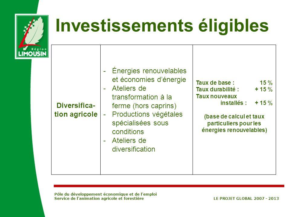Pôle du développement économique et de lemploi Service de lanimation agricole et forestière LE PROJET GLOBAL 2007 - 2013 Diversifica- tion agricole -