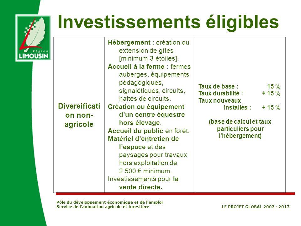 Pôle du développement économique et de lemploi Service de lanimation agricole et forestière LE PROJET GLOBAL 2007 - 2013 Diversificati on non- agricol