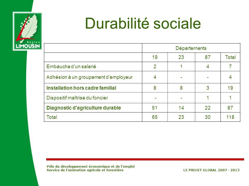 Pôle du développement économique et de lemploi Service de lanimation agricole et forestière LE PROJET GLOBAL 2007 - 2013 Durabilité sociale Départemen