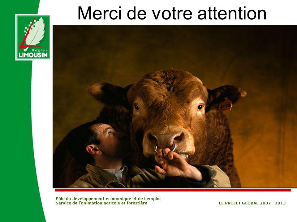 Pôle du développement économique et de lemploi Service de lanimation agricole et forestière LE PROJET GLOBAL 2007 - 2013 Merci de votre attention