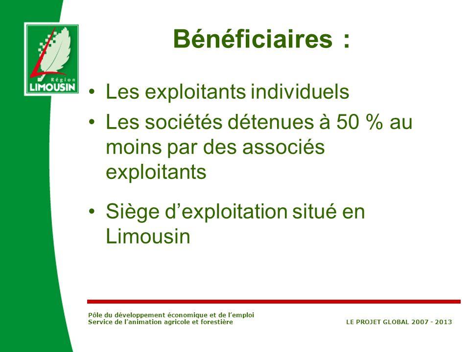 Pôle du développement économique et de lemploi Service de lanimation agricole et forestière LE PROJET GLOBAL 2007 - 2013 Bénéficiaires : Les exploitan