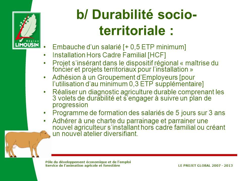 Pôle du développement économique et de lemploi Service de lanimation agricole et forestière LE PROJET GLOBAL 2007 - 2013 b/ Durabilité socio- territor