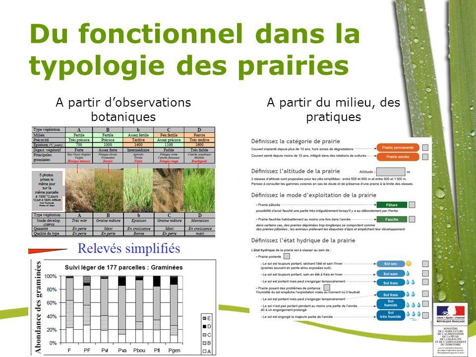 Du fonctionnel dans la typologie des prairies A partir dobservations botaniques A partir du milieu, des pratiques