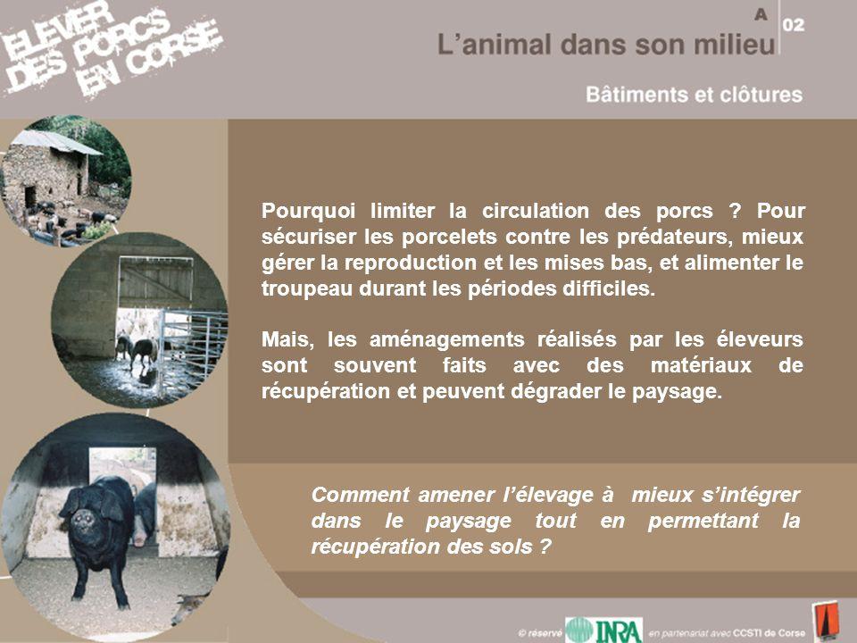 Pourquoi limiter la circulation des porcs ? Pour sécuriser les porcelets contre les prédateurs, mieux gérer la reproduction et les mises bas, et alime