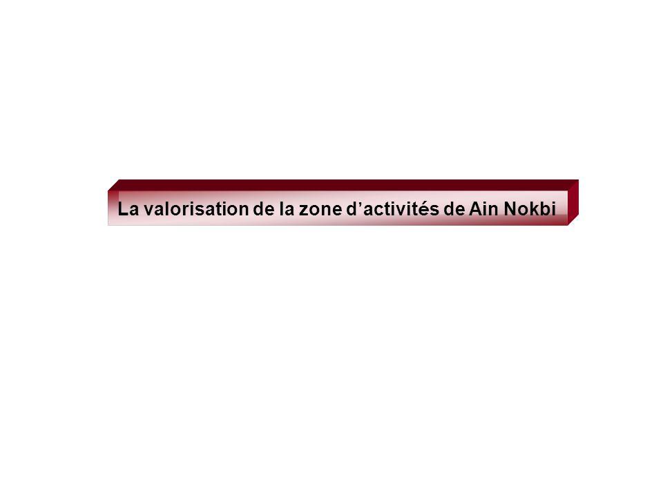 La valorisation de la zone d activit é s de Ain Nokbi