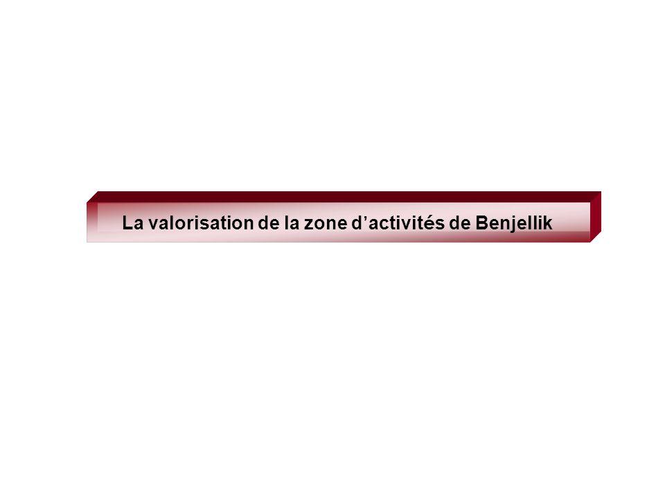La valorisation de la zone d activit é s de Benjellik