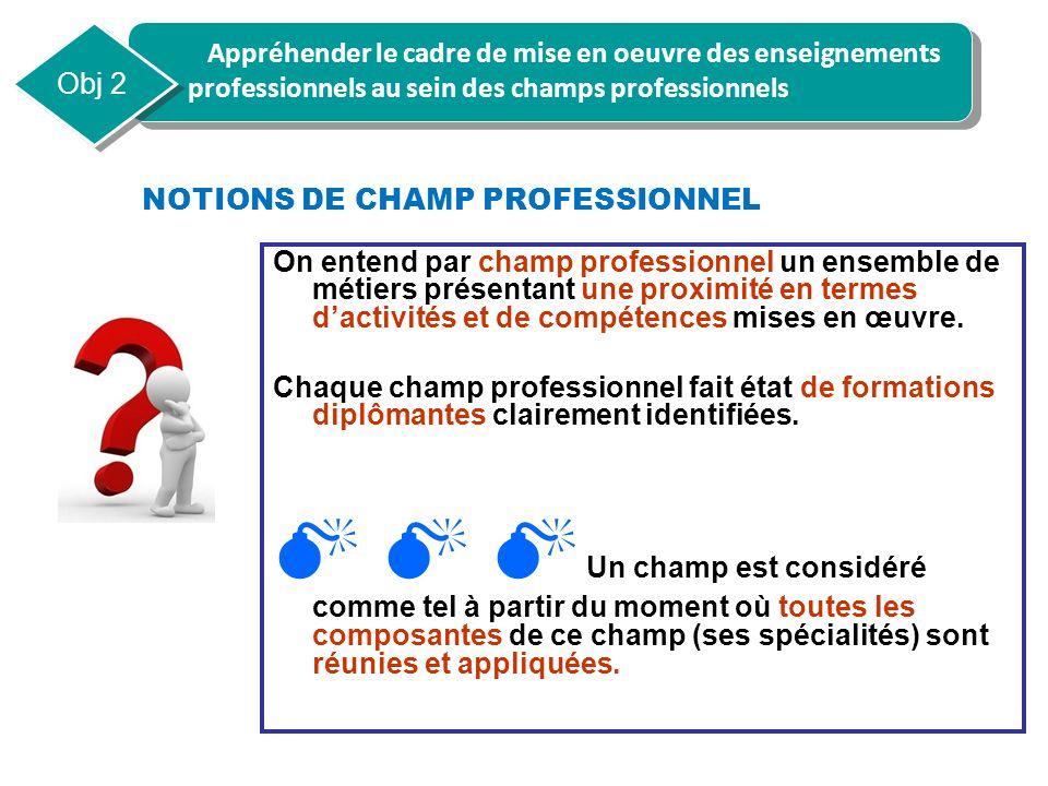 NOTIONS DE CHAMP PROFESSIONNEL On entend par champ professionnel un ensemble de métiers présentant une proximité en termes dactivités et de compétence
