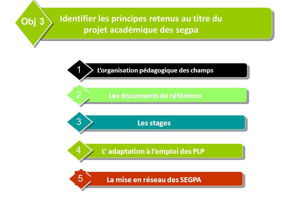 Contents Lorganisation pédagogique des champs 1 Les documents de référence 2 Les stages 3 L adaptation à lemploi des PLP 4 Identifier les principes re