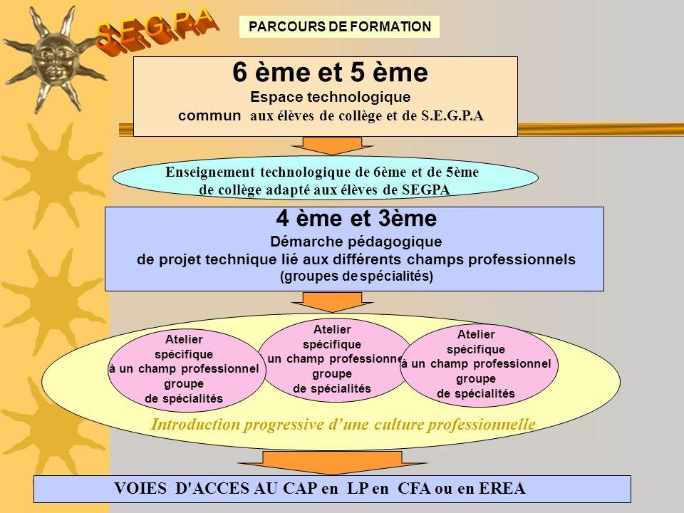 PARCOURS DE FORMATION 6 ème et 5 ème Espace technologique commun aux élèves de collège et de S.E.G.P.A 4 ème et 3ème Démarche pédagogique de projet te