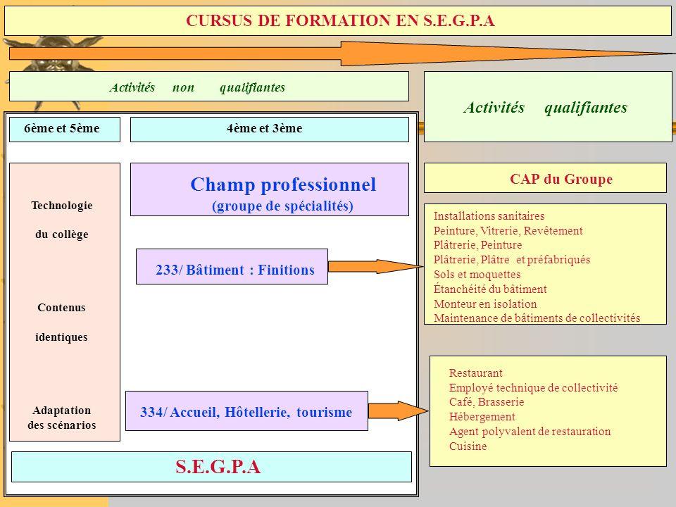 S.E.G.P.A Activités non qualifiantes Activités qualifiantes 6ème et 5ème4ème et 3ème Technologie du collège Contenus identiques Adaptation des scénari
