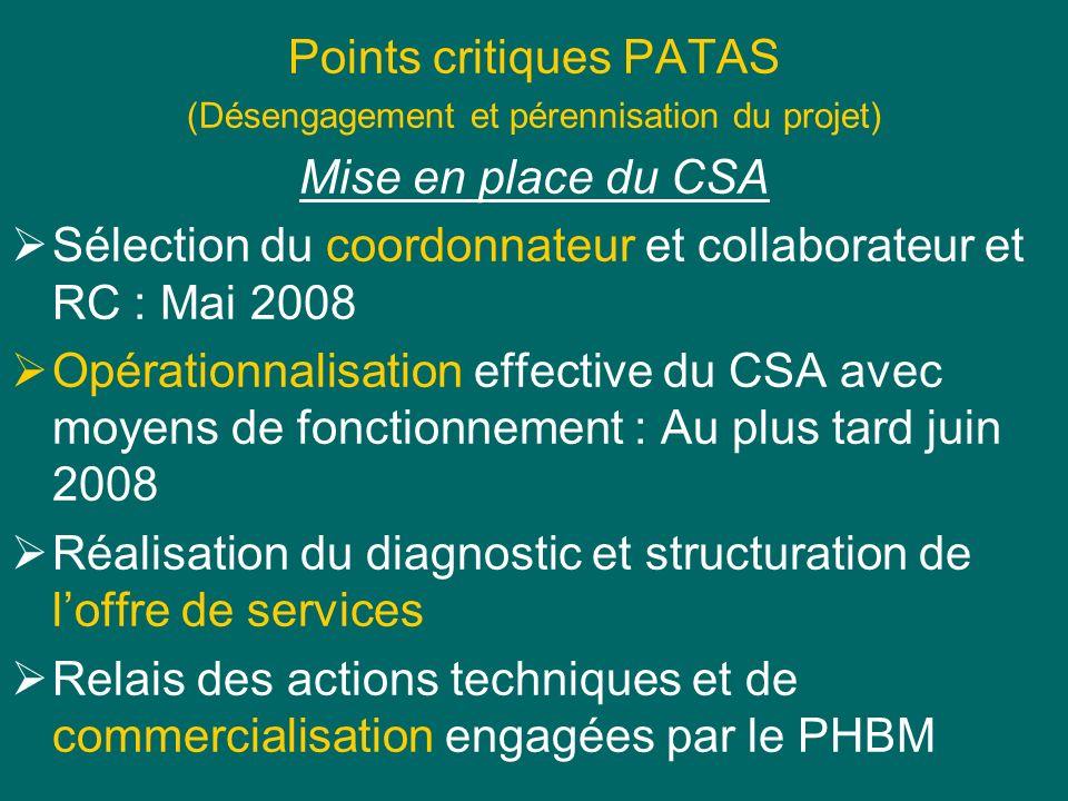 Points critiques PATAS (Désengagement et pérennisation du projet) Mise en place du CSA Sélection du coordonnateur et collaborateur et RC : Mai 2008 Op