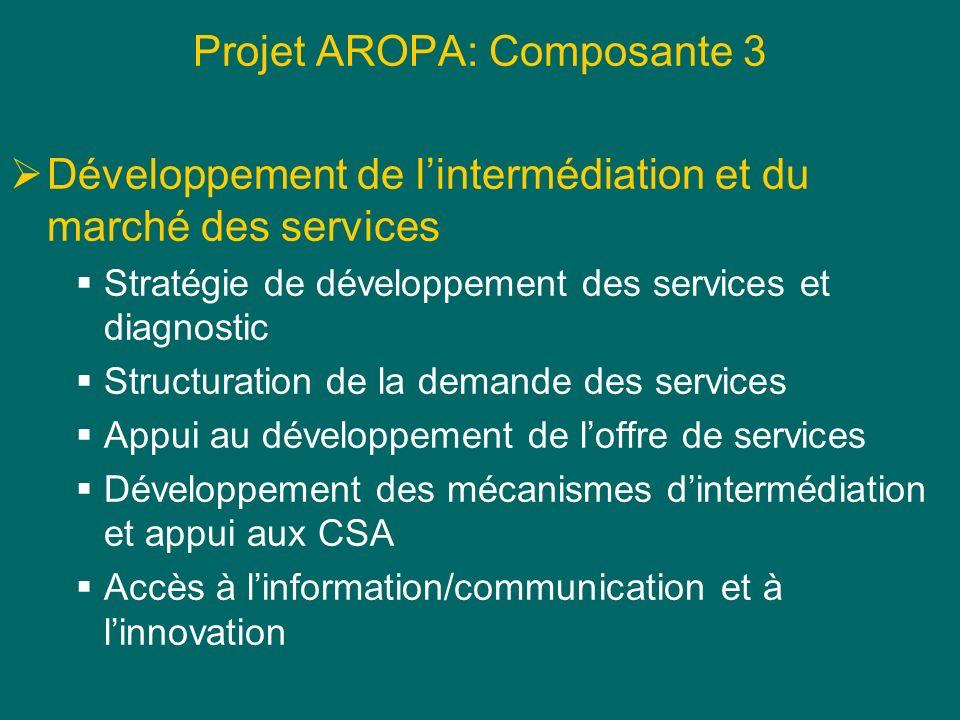 Projet AROPA: Composante 3 Développement de lintermédiation et du marché des services Stratégie de développement des services et diagnostic Structurat