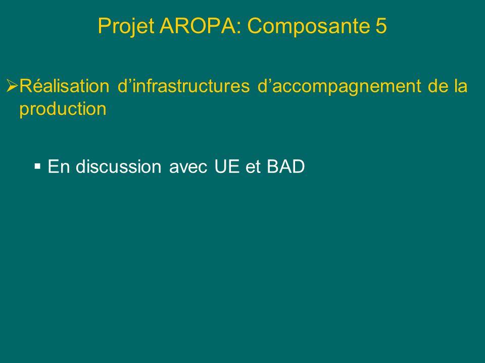 Projet AROPA: Composante 5 Réalisation dinfrastructures daccompagnement de la production En discussion avec UE et BAD