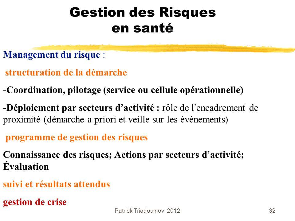 Patrick Triadou nov 201232 Gestion des Risques en santé Management du risque : structuration de la démarche -Coordination, pilotage (service ou cellul