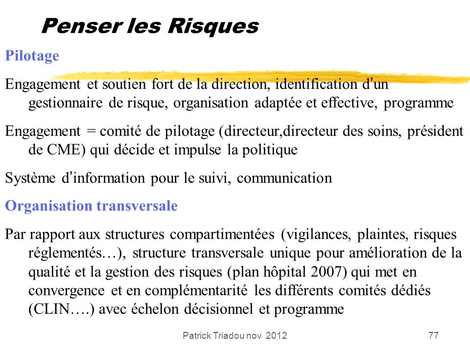Patrick Triadou nov 201277 Penser les Risques Pilotage Engagement et soutien fort de la direction, identification dun gestionnaire de risque, organisa