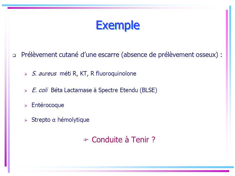 Exemple Prélèvement cutané dune escarre (absence de prélèvement osseux) : S. aureus méti R, KT, R fluoroquinolone E. coli Béta Lactamase à Spectre Ete