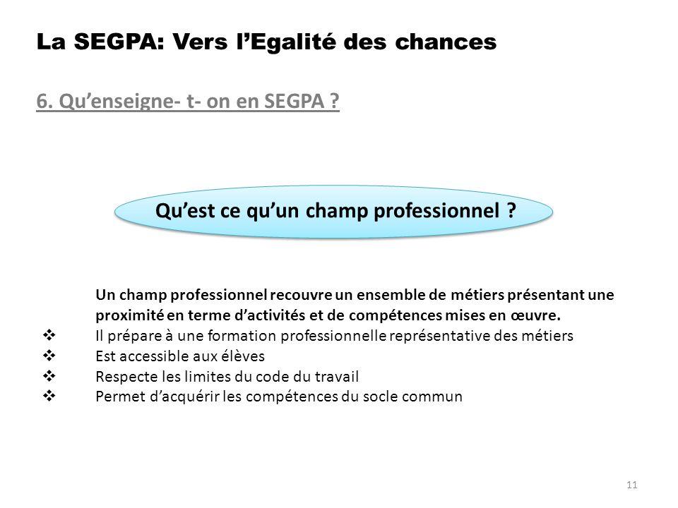 6.Quenseigne- t- on en SEGPA . Quest ce quun champ professionnel .
