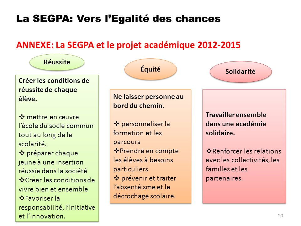 ANNEXE: La SEGPA et le projet académique 2012-2015 20 Réussite Équité Solidarité Créer les conditions de réussite de chaque élève.