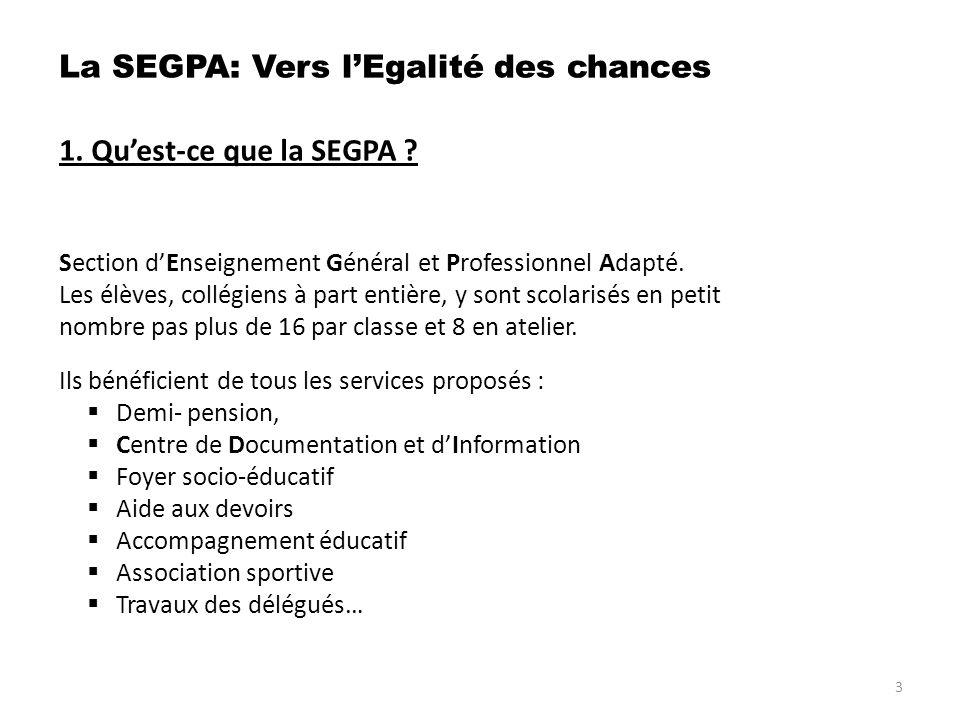 6.Quenseigne- t- on en SEGPA . b. Objectifs prioritaires des classes.