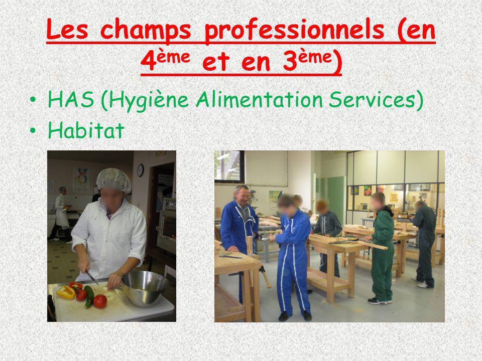 Les champs professionnels (en 4 ème et en 3 ème ) HAS (Hygiène Alimentation Services) Habitat