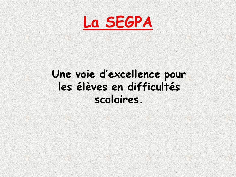 La SEGPA Une voie dexcellence pour les élèves en difficultés scolaires.