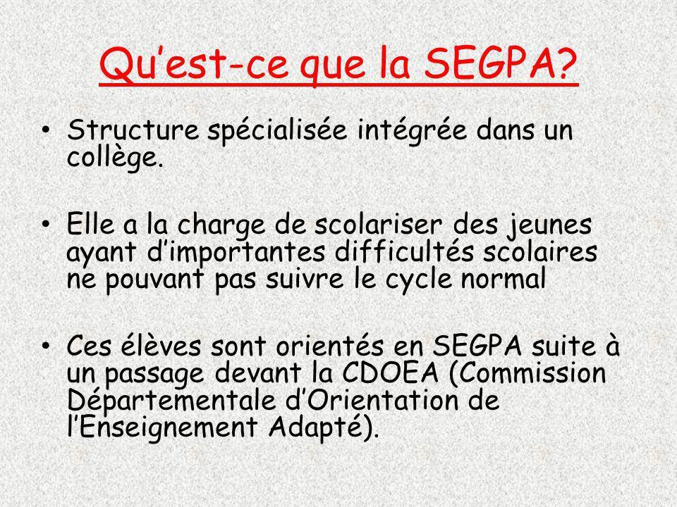 Quest-ce que la SEGPA.Structure spécialisée intégrée dans un collège.