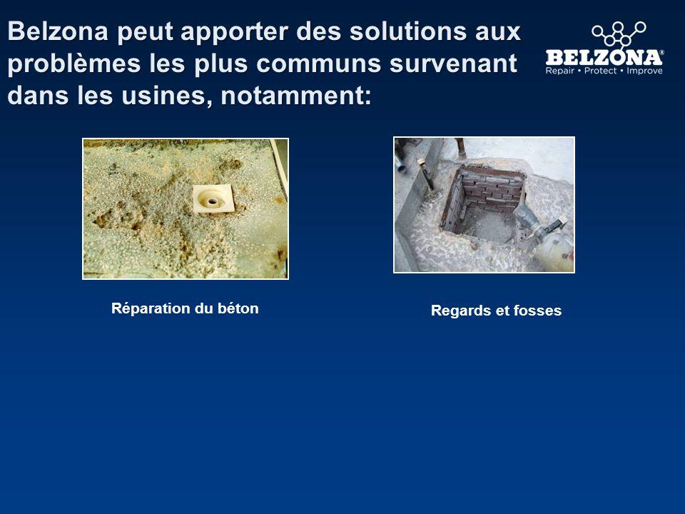 Belzona peut apporter des solutions aux problèmes les plus communs survenant dans les usines, notamment: Réparation du béton Regards et fosses