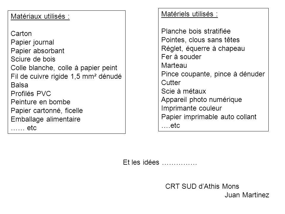 Matériaux utilisés : Carton Papier journal Papier absorbant Sciure de bois Colle blanche, colle à papier peint Fil de cuivre rigide 1,5 mm² dénudé Bal