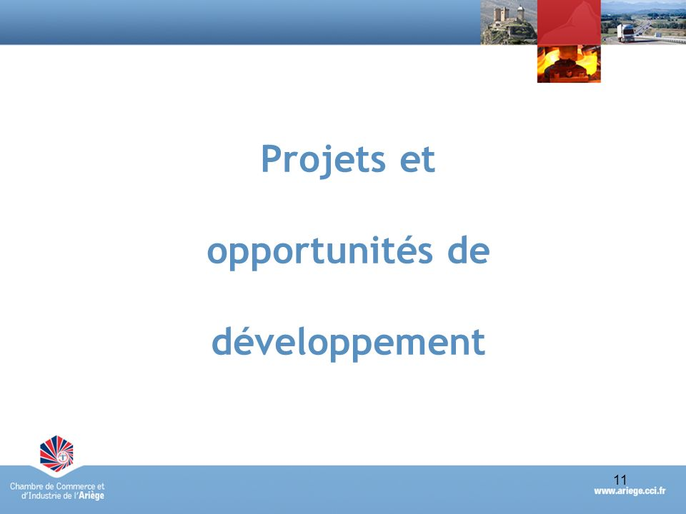 11Portrait économique synthétique du Pays des Pyrénées Cathares - avril 2010 11 Projets et opportunités de développement