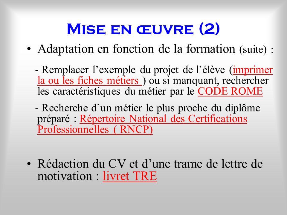 Mise en œuvre (2) Adaptation en fonction de la formation (suite) : - Remplacer lexemple du projet de lélève (imprimer la ou les fiches métiers ) ou si