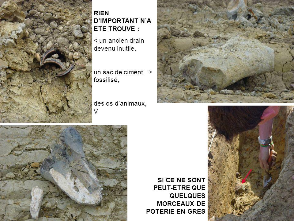 RIEN DIMPORTANT NA ETE TROUVE : < un ancien drain devenu inutile, un sac de ciment > fossilisé, des os danimaux, V SI CE NE SONT PEUT-ETRE QUE QUELQUE