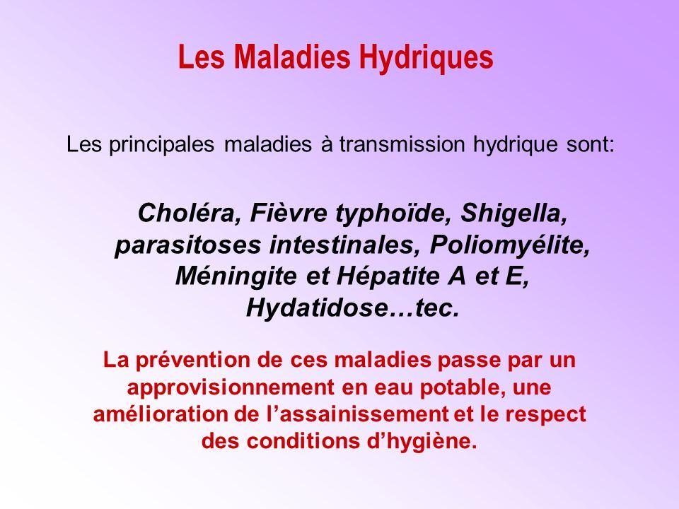 Les Maladies Hydriques Les principales maladies à transmission hydrique sont: Choléra, Fièvre typhoïde, Shigella, parasitoses intestinales, Poliomyélite, Méningite et Hépatite A et E, Hydatidose…tec.