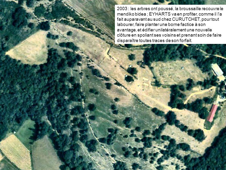 2003 : les arbres ont poussé, la broussaille recouvre le mendiko bidea ; EYHARTS va en profiter, comme il l'a fait auparavant au sud chez CURUTCHET, p