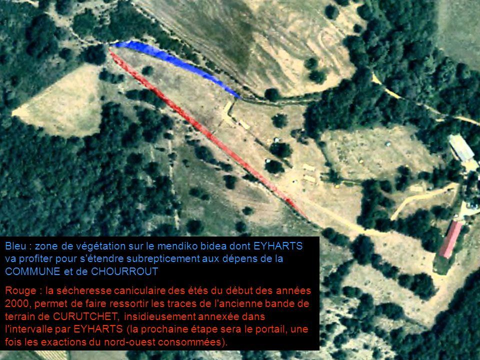 Bleu : zone de végétation sur le mendiko bidea dont EYHARTS va profiter pour s'étendre subrepticement aux dépens de la COMMUNE et de CHOURROUT Rouge :