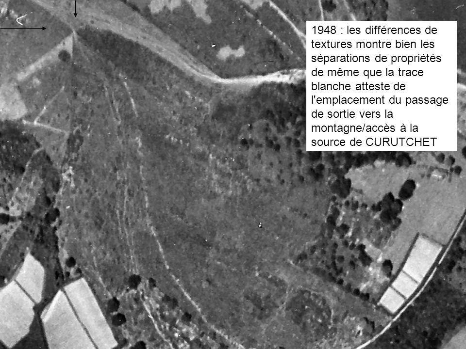 1948 : les différences de textures montre bien les séparations de propriétés de même que la trace blanche atteste de l'emplacement du passage de sorti