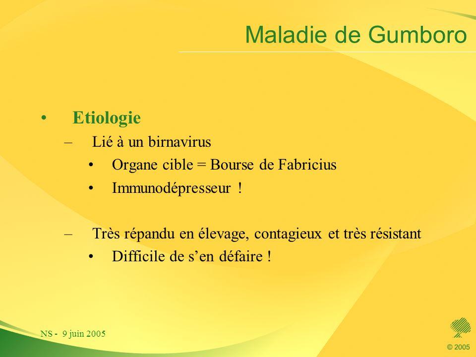 NS - 9 juin 2005 Maladie de Gumboro Etiologie –Lié à un birnavirus Organe cible = Bourse de Fabricius Immunodépresseur ! –Très répandu en élevage, con