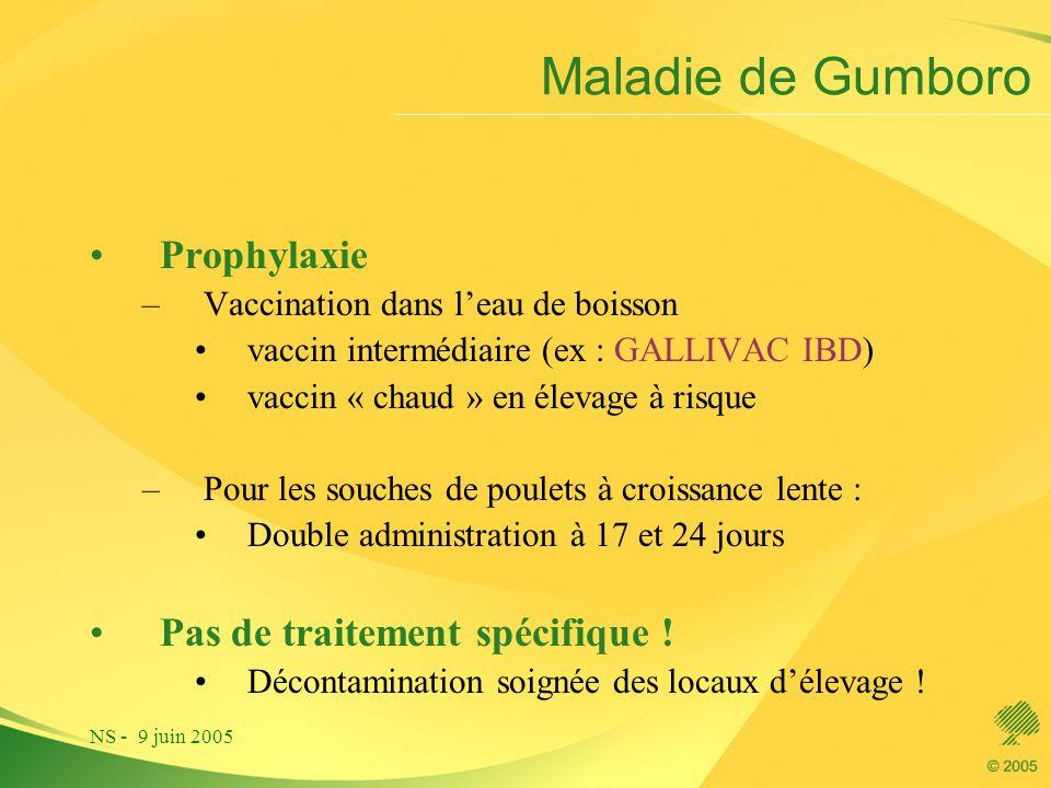 NS - 9 juin 2005 Maladie de Gumboro Prophylaxie –Vaccination dans leau de boisson vaccin intermédiaire (ex : GALLIVAC IBD) vaccin « chaud » en élevage
