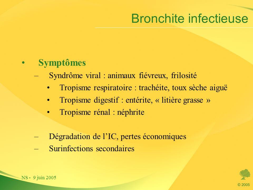 NS - 9 juin 2005 Bronchite infectieuse Symptômes –Syndrôme viral : animaux fiévreux, frilosité Tropisme respiratoire : trachéite, toux sèche aiguë Tro