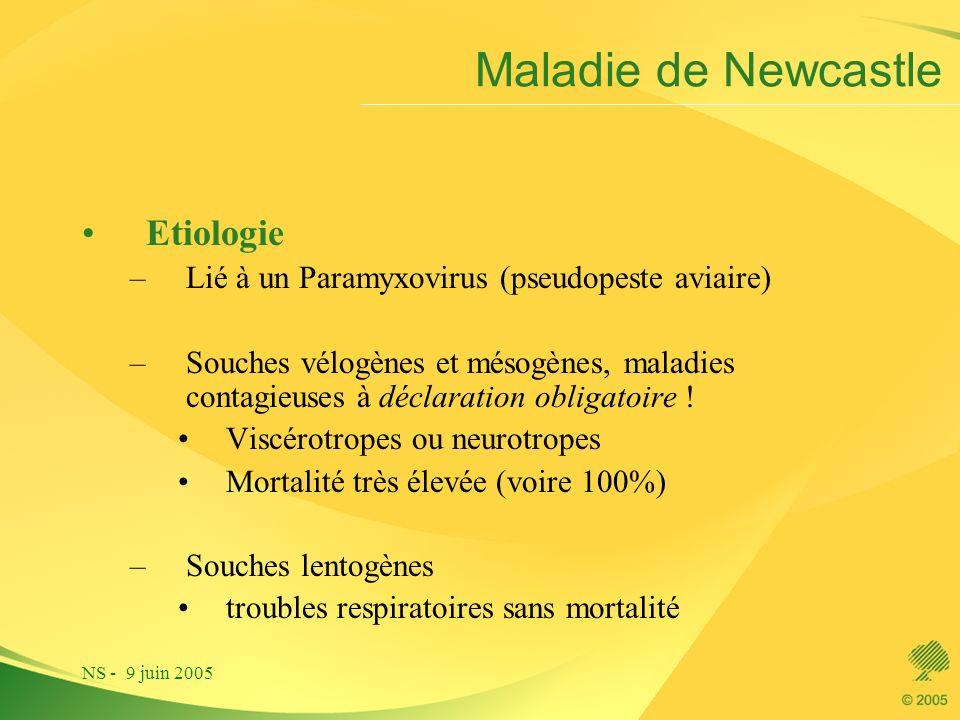 NS - 9 juin 2005 Maladie de Newcastle Etiologie –Lié à un Paramyxovirus (pseudopeste aviaire) –Souches vélogènes et mésogènes, maladies contagieuses à