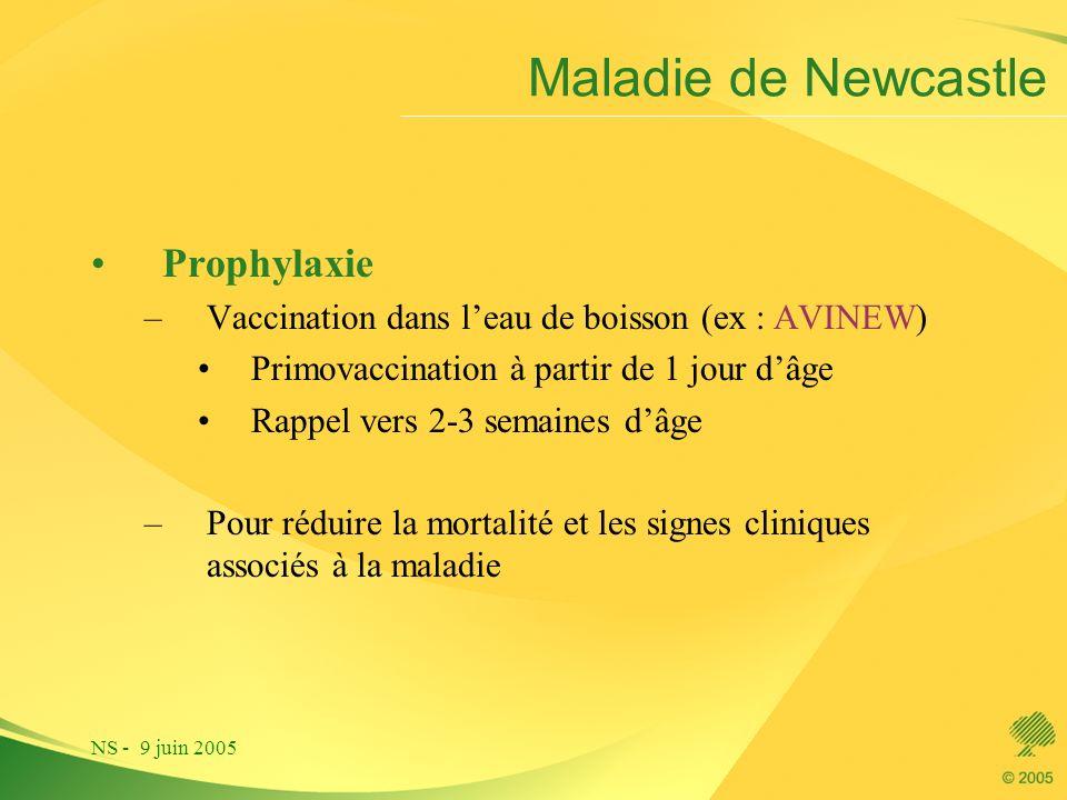 NS - 9 juin 2005 Maladie de Newcastle Prophylaxie –Vaccination dans leau de boisson (ex : AVINEW) Primovaccination à partir de 1 jour dâge Rappel vers