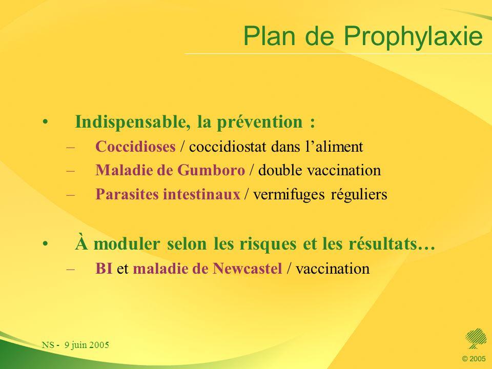 NS - 9 juin 2005 Indispensable, la prévention : –Coccidioses / coccidiostat dans laliment –Maladie de Gumboro / double vaccination –Parasites intestin