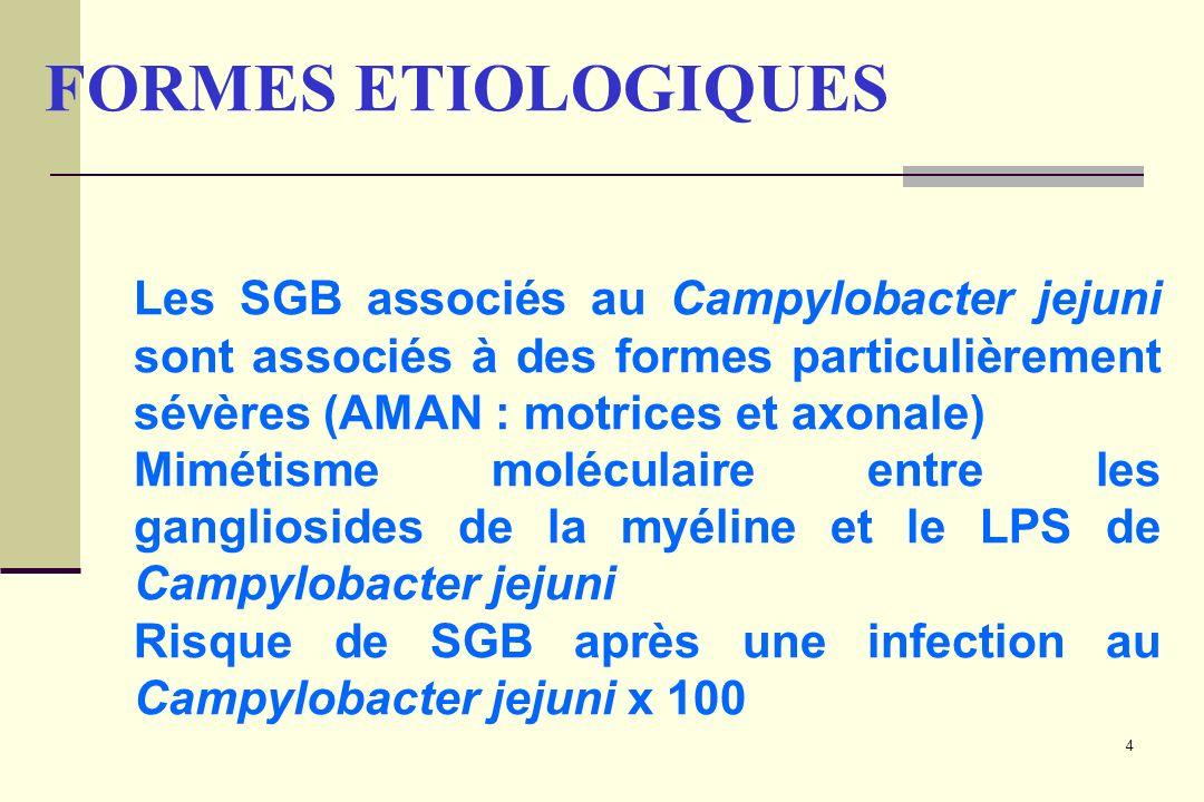 4 Les SGB associés au Campylobacter jejuni sont associés à des formes particulièrement sévères (AMAN : motrices et axonale) Mimétisme moléculaire entr