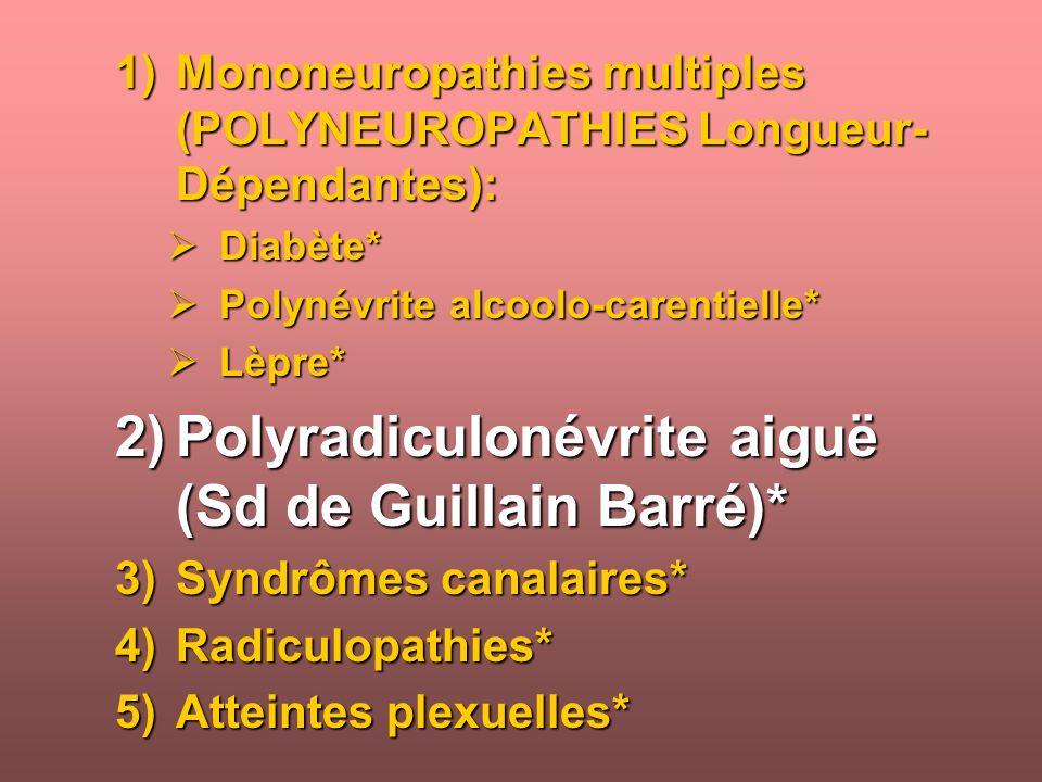 1)Mononeuropathies multiples (POLYNEUROPATHIES Longueur- Dépendantes): Diabète* Diabète* Polynévrite alcoolo-carentielle* Polynévrite alcoolo-carentielle* Lèpre* Lèpre* 2)Polyradiculonévrite aiguë (Sd de Guillain Barré)* 3)Syndrômes canalaires* 4)Radiculopathies* 5)Atteintes plexuelles*